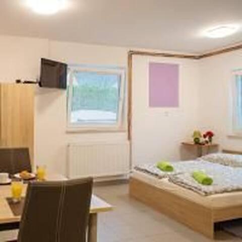 Duo apartment in Ljubljana