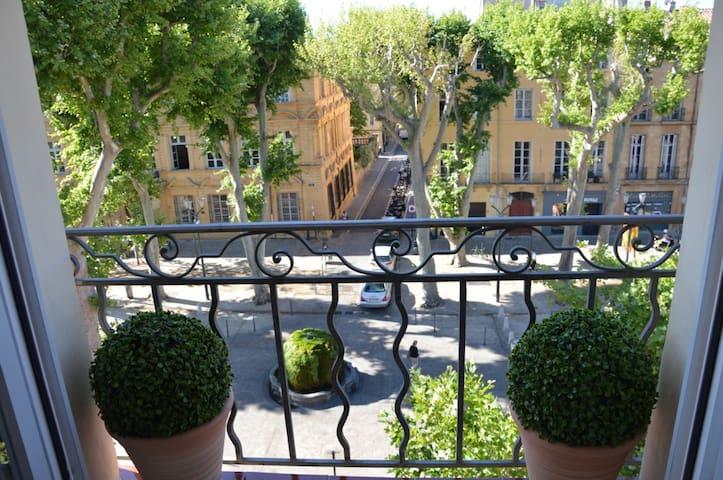 """Vue magnifique sur le cours Mirabeau et sur la fontaine """"moussue""""."""