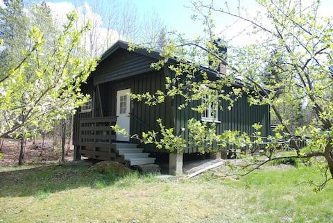 Sentral hytte i rolige og idylliske omgivelser