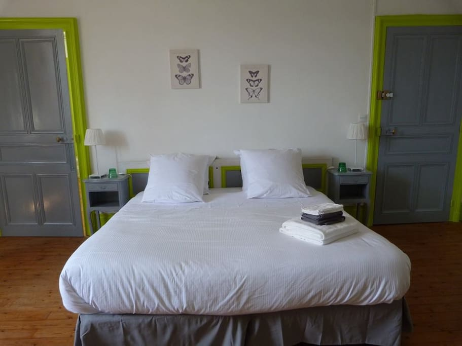 ch teau de beauch ne bed and breakfasts for rent in allogny centre france. Black Bedroom Furniture Sets. Home Design Ideas