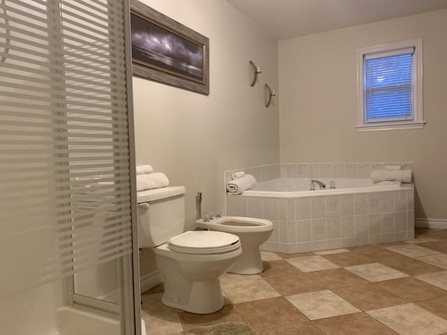 Bathroom with jet tub/shower and laundry facilities