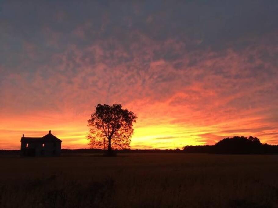 Spectacular sunrise!