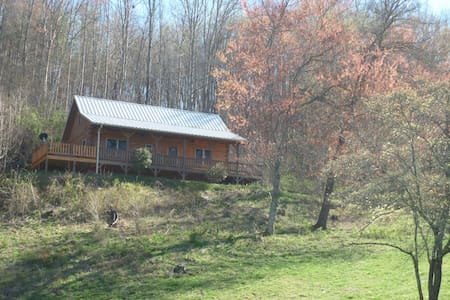New Cabin in Great Smoky Mountains - Whittier - Zomerhuis/Cottage