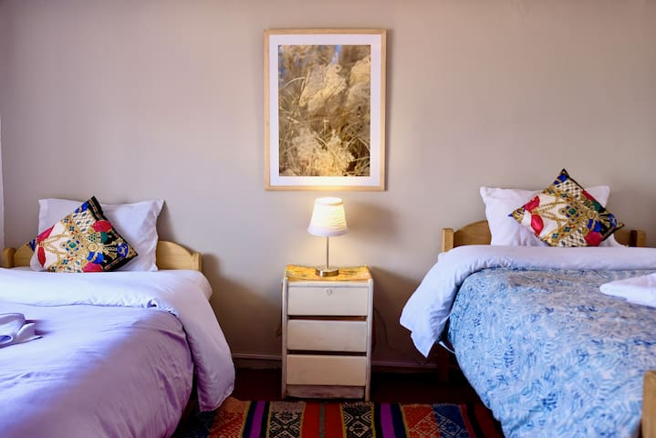 Spacious and Elegant room with two Single Beds