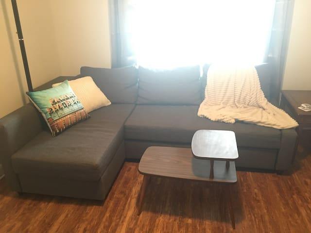 Downtown St. Catharines - Sofabed (Living Room)