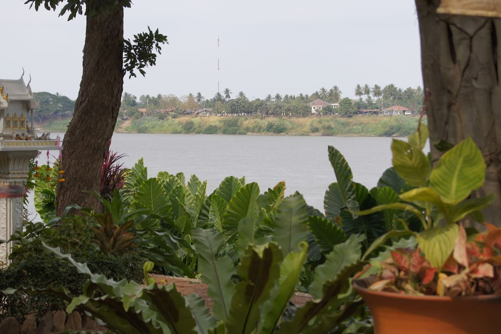 Looking across the Mekong River to Laos from our Garden