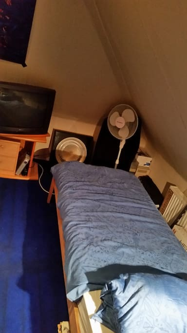 Single person  bed with tv (tv can turned to the 2 person bed)