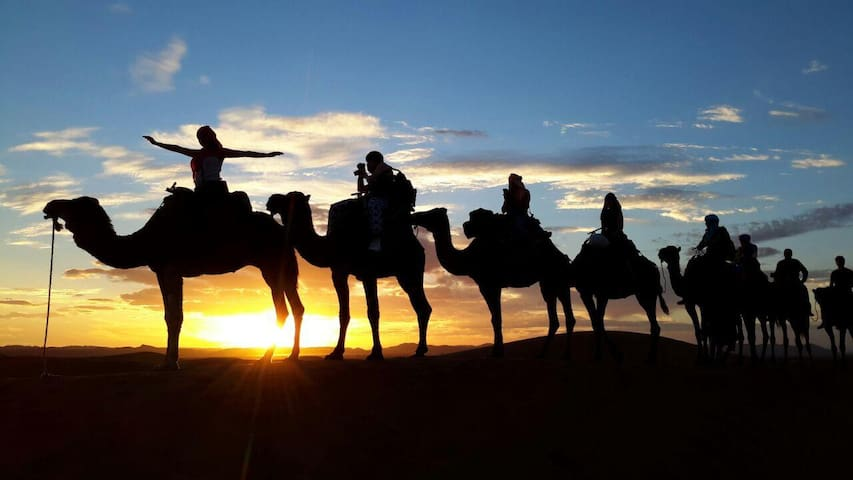 Overnight Trip by Camels to the Desert