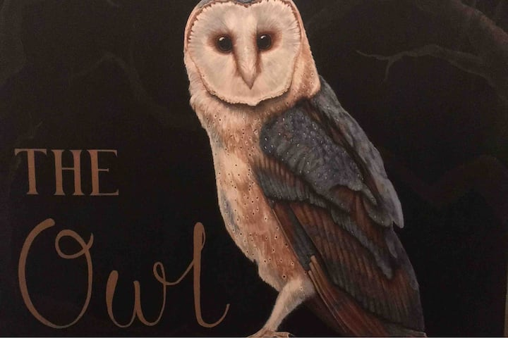 The Owl on Hilltop