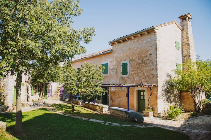 Traditional Istrian apartment 452