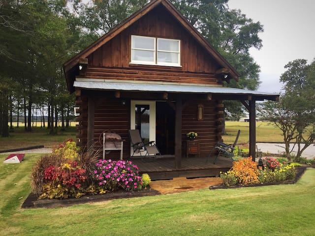Black Warrior's Cozy Cabin