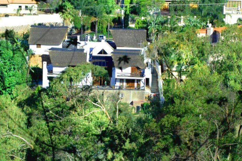 Aerial view of Coral Tree Inn.