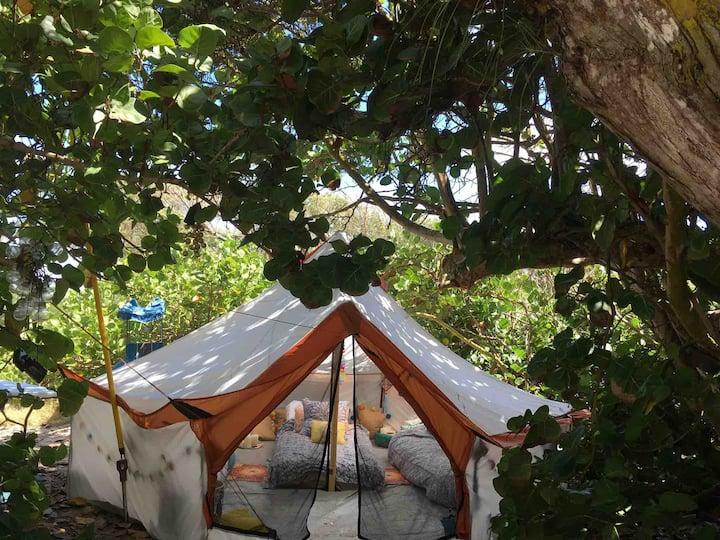 Magical Glamping under Hawaiian Sky! tent rent