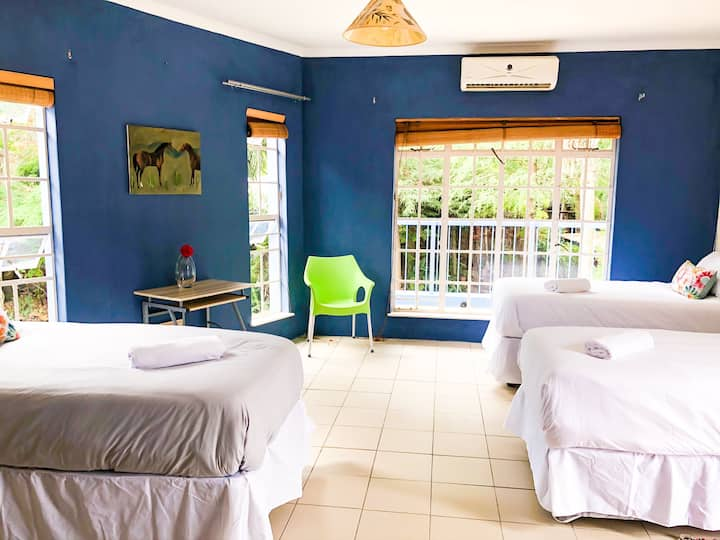 Blue Room for 3 in backpackers' Haven