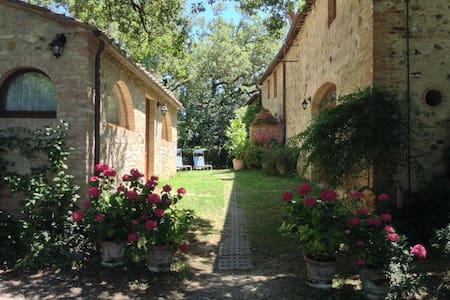 Charming apartments near Siena - Castelnuovo Berardenga