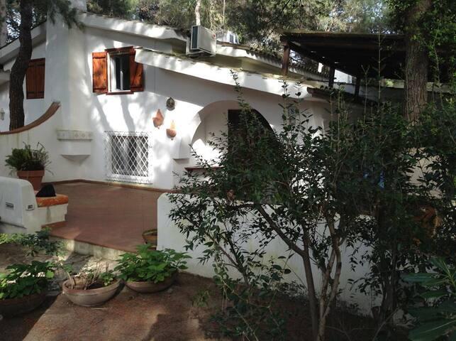 Grazioso residence Riva dei Tessali - Riva dei Tessali (Taranto) - Villa