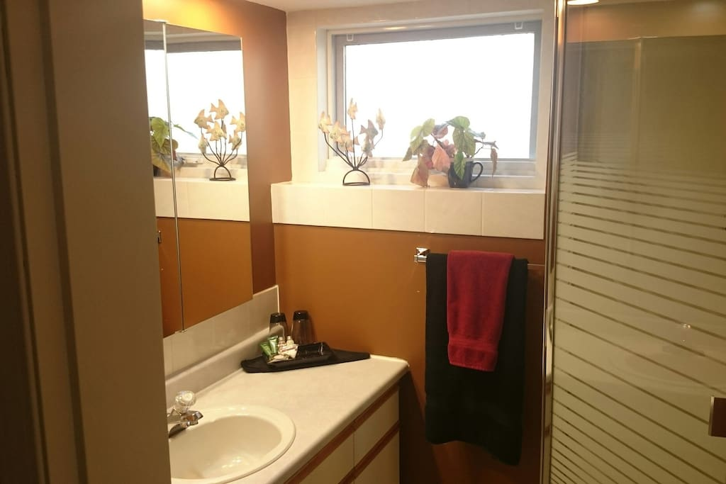 four piece bath - sink, toilet, tub, and separate shower.