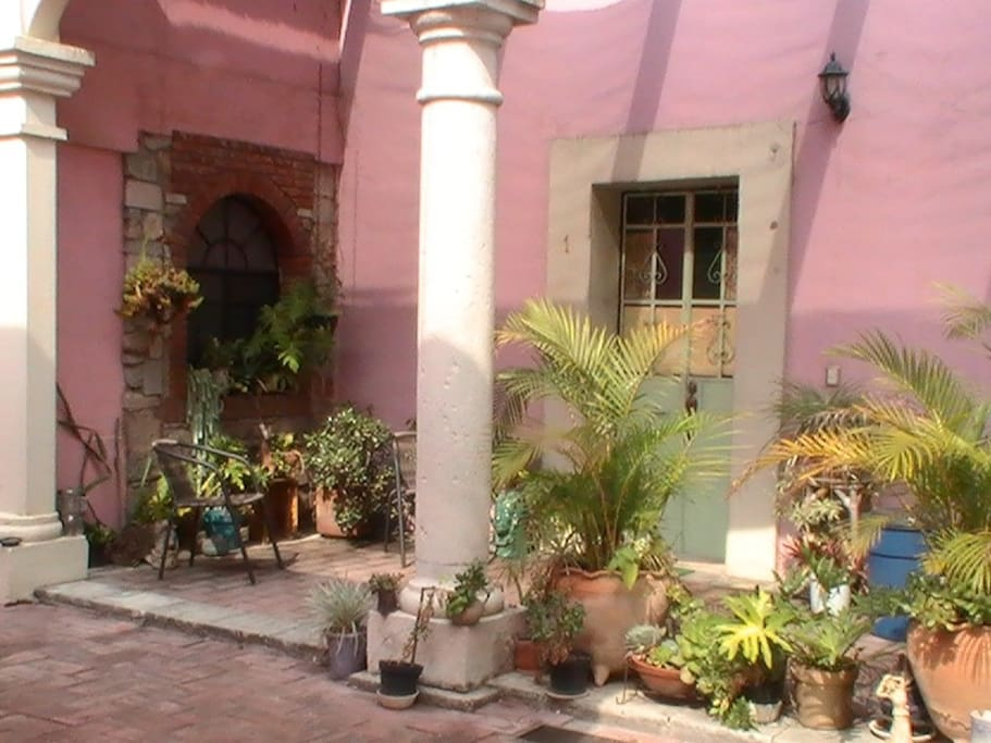 Plant-filled Patios