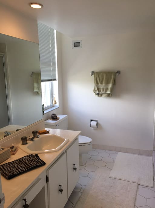Spacious bathroom with stand alone shower and walkin closet.