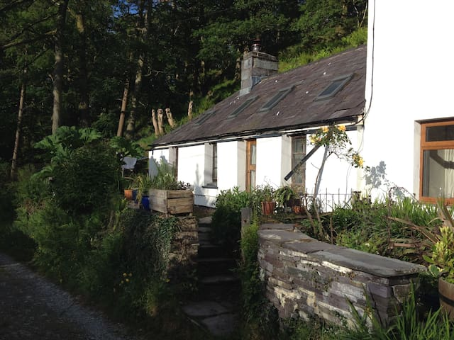 Mountain cottage above Llanberis - Caernarfon