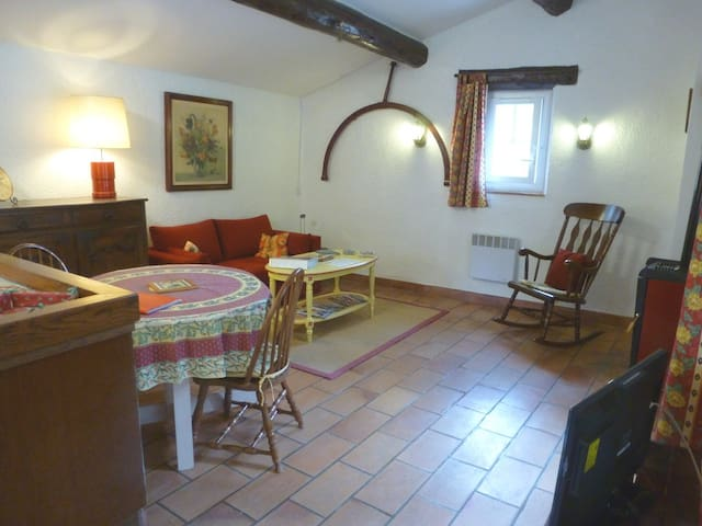 Appartement du Moulin - La Bastide-des-Jourdans - Lägenhet