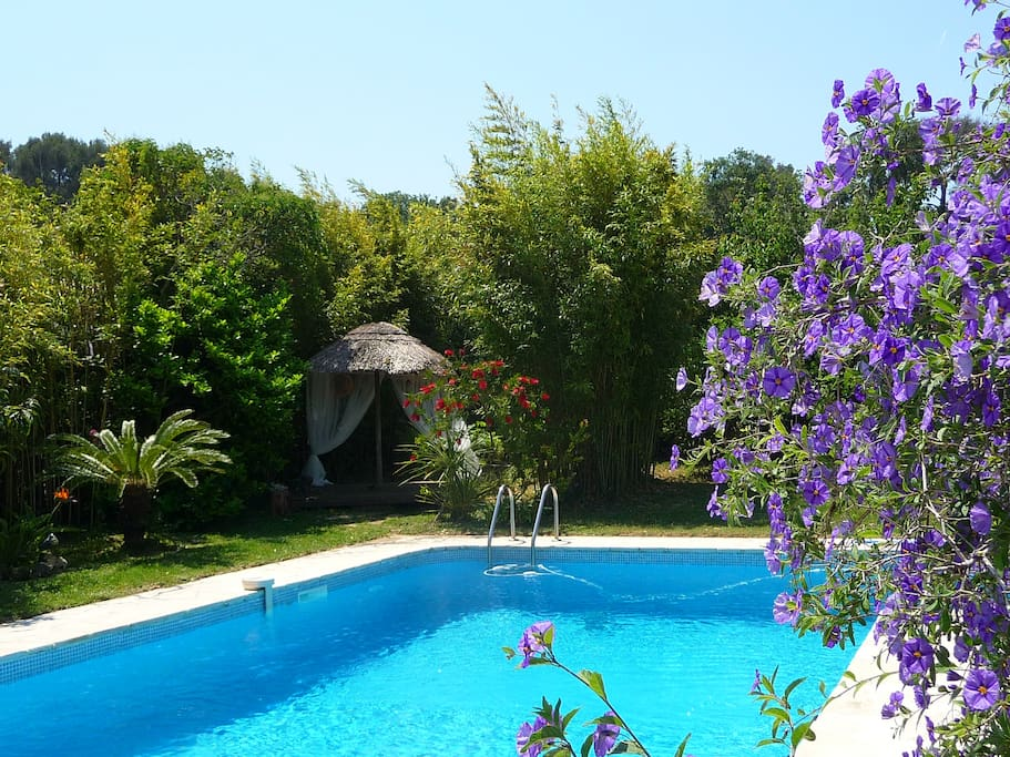 Villa contemporaine piscine et spa villas for rent in for Piscine six fours