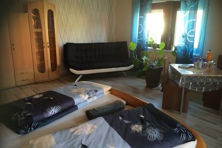 Zimmer zur ehemaligen Weinstube - Bietigheim-Bissingen - Huoneisto