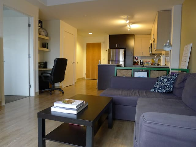 Modern Downtown Boston One-Bedroom with Free WiFi