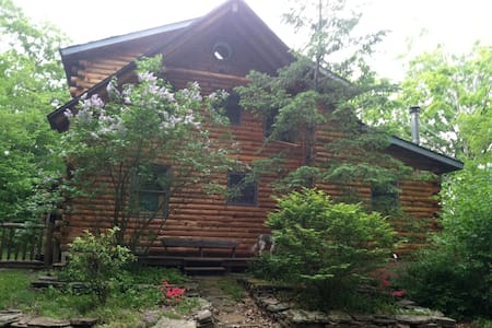 SECLUDED LOG HOME NEAR WINDHAM, NY - East Jewett - Xalet