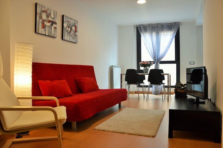 APARTAMENTOS JURRAMENDI ESTELLA - Estella - Apartment