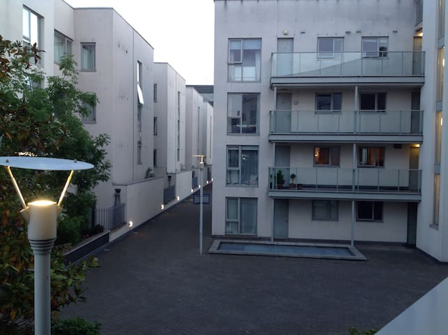 Homely apt in quiet D4 location