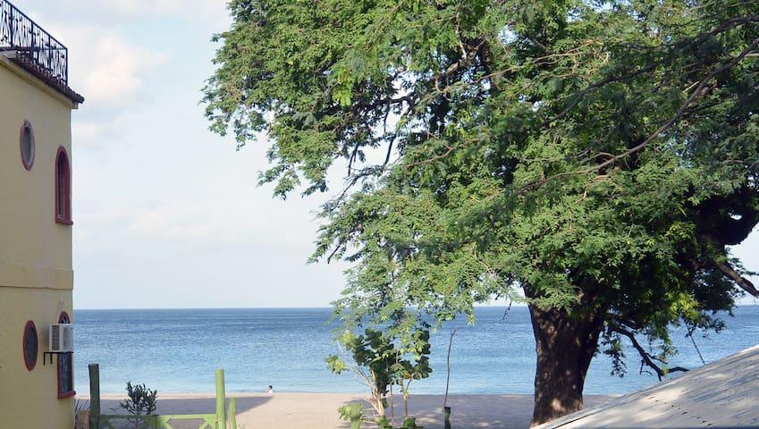 La Ocean Vista