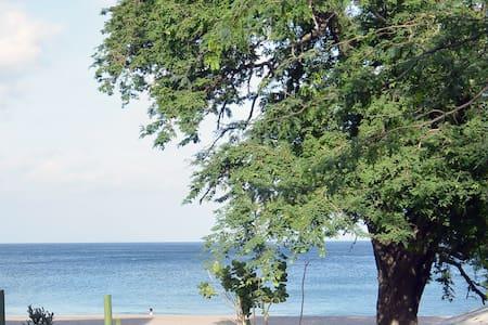 La Ocean Vista - Playa Gigante - 小屋