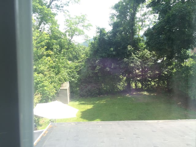 The yard ; view from the upstairs bedroom.