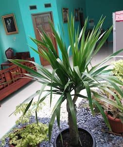 A room for rest and relax near Jakarta - Pamulang - Bed & Breakfast