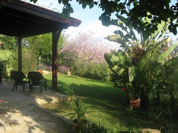 Nanaim Lodge Country Accommodation #2