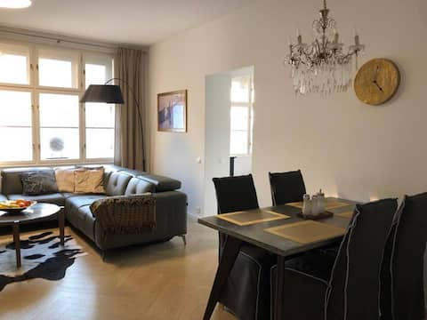 Luxury apartment in heart of the city