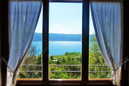 Le finestre sul lago - Castel Gandolfo