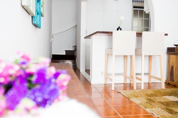 Typical Cagareu Aveiro House