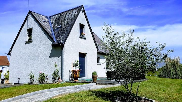 Au fil des vins de Loire et des Châteaux