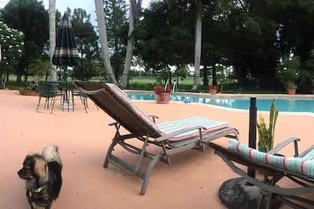 Private guest house garden paradise - Napoli - Bungalov