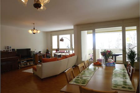 Large, modern and clean apartment - Meyrin