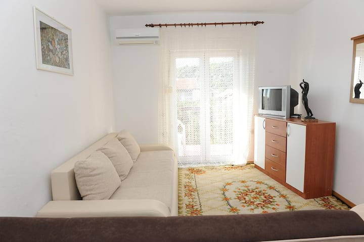 One bedroom apartment with balcony and sea view Podaca, Makarska (A-15748-c)