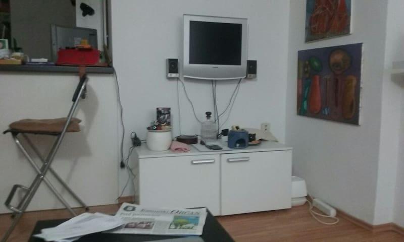 Cosy 1BD Apartment&Kichen&Bathroom - Vrhpolje pri Kamniku