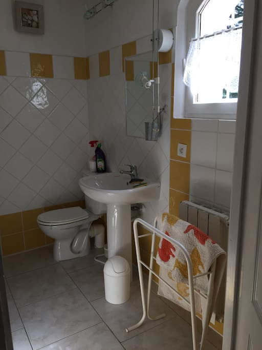 Chambre salle d 39 eau wc 2 pers bed breakfasts for rent for Salle d eau avec wc