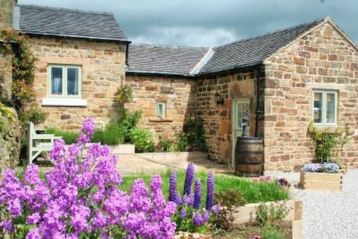 Bleak House Cottage Peak District - Dog Friendly.