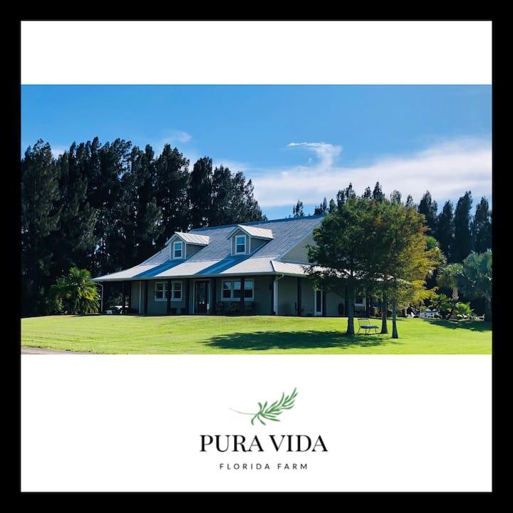 Private Room at Pura Vida Florida Farm