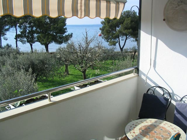 Apartment OLIVA 50m from the beach