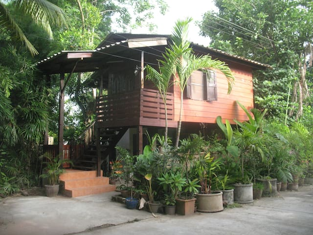 Teak Wood House in the Palms - Chiang Mai - Huis