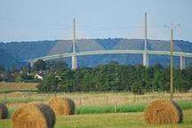 le pont suspendu de Brotonne et la foret domaniale (hêtraie) de Brotonne à 17 kms